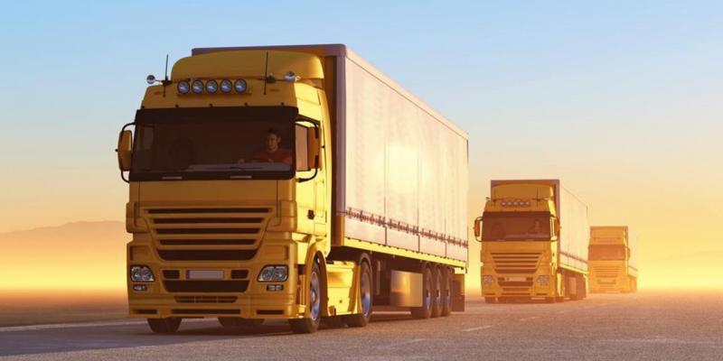 Este indicat sa achizitionam piese pentru  camioane din cadrul unui magazin online?