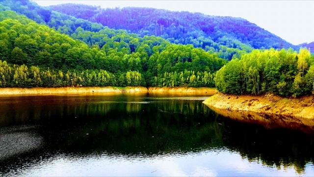 Vrei sa iti petreci zilele de vara la munte? Iata de ce sa alegi Muntii Sureanu!