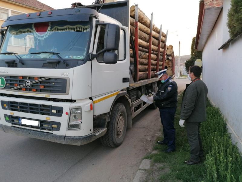 Amenzi de 19.500 lei și 140,5 de metri cubi de lemn confiscat în urma unei acțiuni ample de control