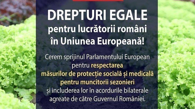"""Inițiativă a PSD: """"Semnează petiția """"Drepturi egale pentru lucrătorii români în Uniunea Europeană""""!"""""""