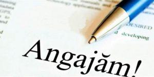 Trei instituții ale statului din județul Alba ANGAJEAZĂ!!!