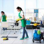 Cleopatra Clean, firmă de curățenie și dezinsecție, angajează personal calificat