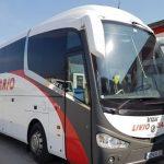 Livio Dario angajează șoferi în Sebeș!!!