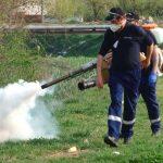 Miercuri, 29 iulie au loc lucrări de dezinsecție pe raza municipiului Sebeș
