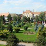 MUNICIPIUL SEBEȘ: ANUNŢ PUBLIC PRIVIND DECLANȘAREA PROCEDURII DE ATRIBUIRE A UNUI NUMĂR DE 13 AUTORIZAȚII TAXI