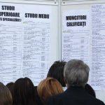 AJOFM Alba - Lista locurilor de muncă disponibile în județ