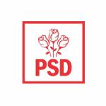 PSD:''Firmele așteaptă cu disperare banii promiși, dar liberalii sunt preocupați de altceva''