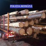 Câmpeni - 31 de mc de material lemnos confiscați în urma unui control în trafic