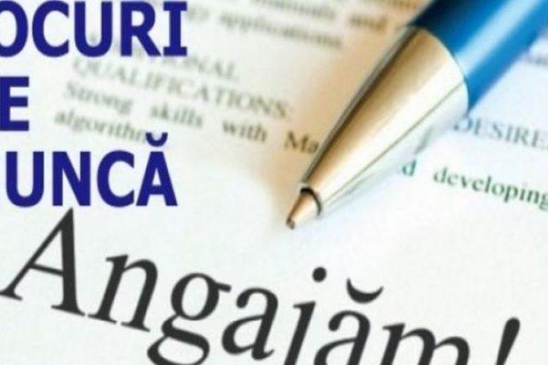 Lista locurilor de muncă disponibile în județul Alba la data de 1 iulie