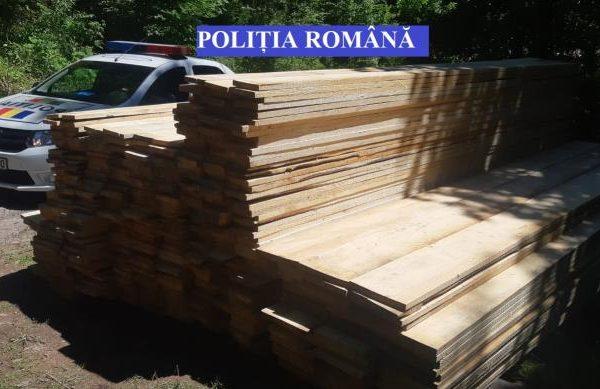 Scărișoara - Peste 8 mc de cherestea fără documente au fost confiscați