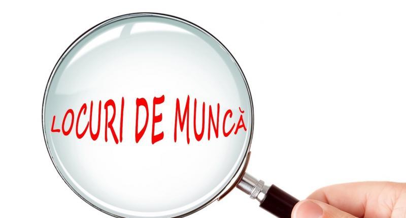 Lista locurilor de muncă disponibile în județul Alba!