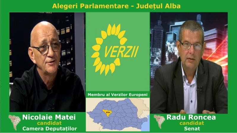 Partidul Verde, filiala Alba și-a desemnat primii candidați la alegerile parlamentare