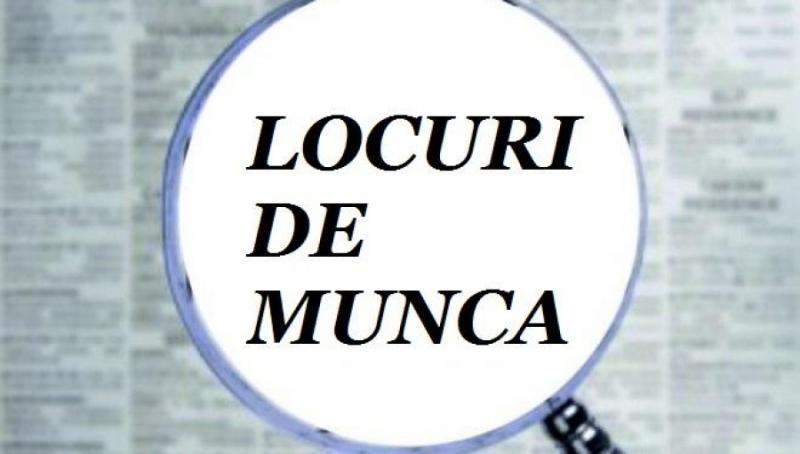Vezi AICI lista locurilor de muncă vacante în județul Alba!