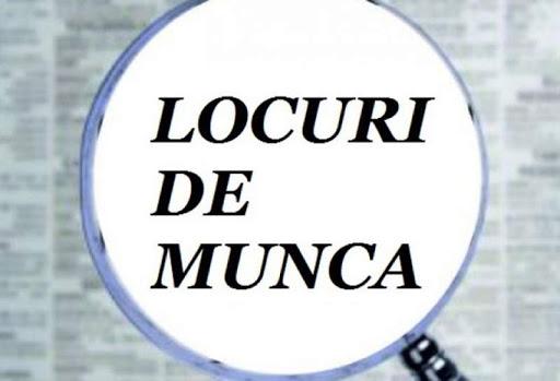 Locuri de muncă vacante în mai multe instituții publice din județul Alba!