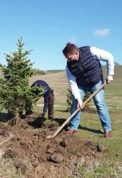 """Campania """"Un copac pentru fiecare locuitor al municipiului Sebeș"""", în plină desfășurare. Primarul Dorin Nistor anunță că vineri au fost plantați primii 450 de arbori."""