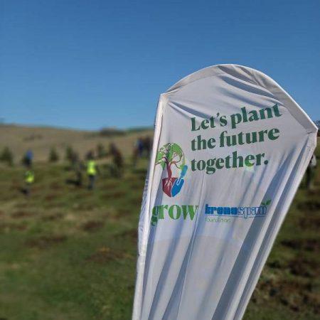 Fundația Kronospan susține acțiunile de plantare din Sebeș