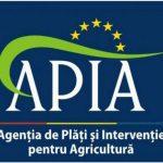 APIA plătește ajutorul de stat în valoare 23.621.947 lei pentru 206 solicitanţi din sectorul creşterii animalelor