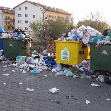 Noile majorări ale tarifelor la gunoiul din Alba Iulia, votate de PNL și USR, declarate ilegale!